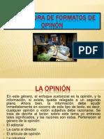 ESTRUCTURA DE FORMATOS DE OPIN ôN.pptx