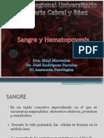 Sangre y Hematopoyesis Final2