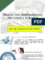 proyectosprivadosyproyectos publicos