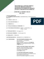 Sylabus Micro y Para