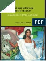 Guia Para Los Consejos Tecnicos de Las Escuelas de TC de EduPri. Mayo 2013
