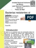 Bacterias resistentes al jabón