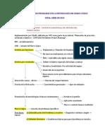 Formulación de Programas con la metodología del marco lógico-resumen ROY