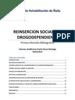 Reinsercion Social Del Drogodependiente