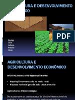 AGRICULTURA E DESENVOLVIMENTO ECONÔMICO