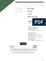 Lay Algebra Lineal y Sus Aplicaciones - David C. Lay - En Español