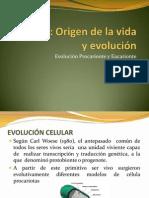 Ppt 3 Evolucion Procarionte y EucarionteO