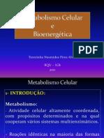 Aula 6 Metabolismo Celular
