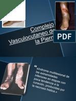 Complejo Vasculocutaneo de La Pierna