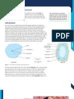 Ed Excel i Gcse Human Biology Chapter 1