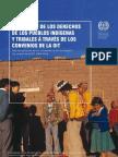Reclamaciones Indigenas a Tribunales