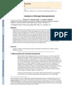 Mitochondrial Mechanisms of Estrogen Neuroprotection
