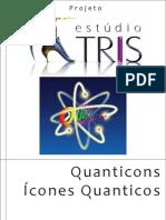 Quanticons 2011