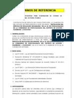 TÉRMINOS DE REFERENCIA.doc