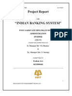 Project Report on Indian Banking System