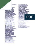 Arhimandrit Ioanichie Bălan-Glosa crestina.doc