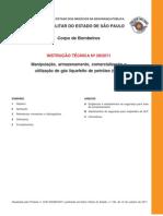 Instrucao Tecnica 28-2011