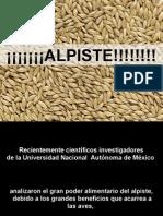 El+Milagro+Del+Alpiste