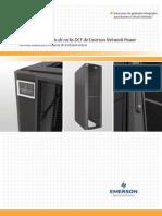 DCF Spanish Brochure