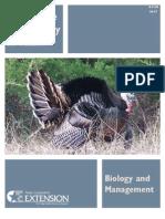 Wild Turkey B&M B-6198