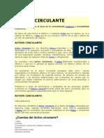 ACTIVO CIRCULANTE.docx