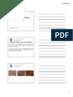 Tema 6 - Plasticidad de Los Suelos-mecanica de Suelos1