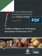 Pueblos Indigenas en El Paraguay Resultados Preliminares - CNI 2012