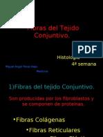 Fibras Del Tejido Conjuntivo -> Futura Médica