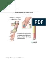 Guía toma de muestra venosa (1)