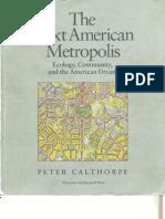 The Next American Metropolis