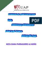 Tipo de Coordenadas - Utm-psad-wsg