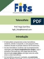 Telencéfalo_01.pdf