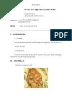 informe pavimentos 4.doc