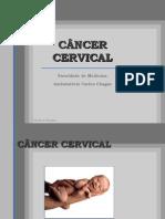 Noções Básicas do Câncer Cervical