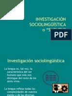 10 Investigacion Sociolinguistica