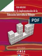 Estudio de Implementacion PEIB