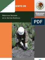 Manual Del Cultivo y Procesamiento de Sabila