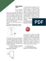 Guia III P (1)