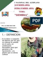 2.- SIEMBRA