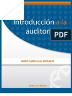Introducciona La Auditoria
