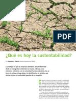 Qué es hoy la sustentabilidad