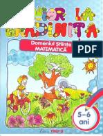 Junior.la.Gradinita.domeniul.matematica 5-6 Ani