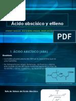 Ácido abscísico y etileno