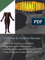 Neuro Anatomia Fisio Hosp