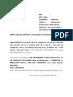 SOLICITO COPIAS.doc