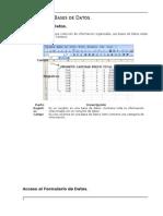Manual Excel Avanzado Xp