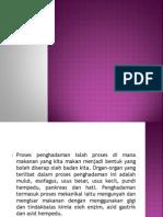 Metabolisma Protein Dan Asid Nukleik