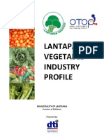 Vegetable Industry Profile of Lantapan,Bukidnon