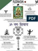 Rudraksha Flier