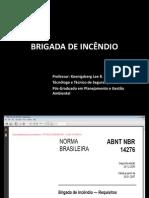 BRIGADA DE INCÊNDIO (1)